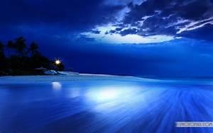 World's Most Beautiful Beaches Travel Wallpaper Background ...