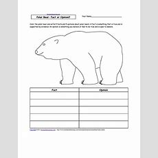 Week 16 Subject Polar Bears Facts And Opinions Worksheet  1st Grade Home School Science
