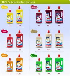 Nettoyant Sol Maison : nettoyant sols et surfaces judy nettoyage de la maison ~ Farleysfitness.com Idées de Décoration