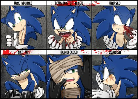 Character Abuse Meme Sonic the Hedgehog by Unichrome uni