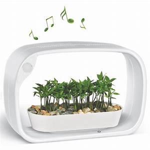Jardiniere Interieur : jardini re d 39 int rieur led et audio jardin secret js53b ~ Melissatoandfro.com Idées de Décoration