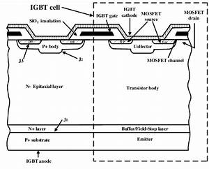 Gn 1971  Diagram Of Cell Structure Free Diagram