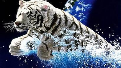 Tiger Wallpapers Widescreen 2400 Desktop Wallpapers13 Wallpapersafari