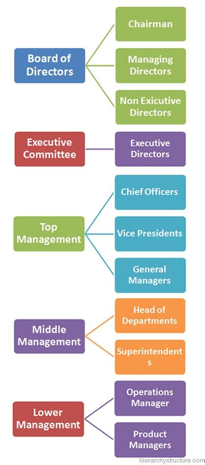 Organization Business by Business Organization Hierarchy Business Hierarchy Structure