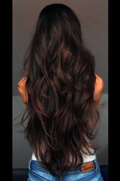 Brown Hair Or Hair On A by Hair Style Shiny Healthy Hair Curls
