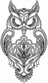 Coloring Pages Animal Adults Animals Adult Owl sketch template