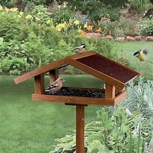 Mangeoire Oiseaux Sur Pied : mangeoire oiseaux jardin accueil design et mobilier ~ Teatrodelosmanantiales.com Idées de Décoration