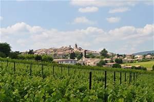 Vins AOC Pierrevert Alpes de Haute Provence