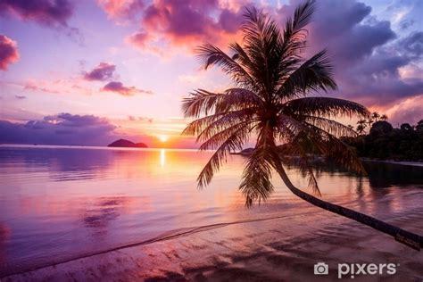 beautiful bright sunset   tropical paradise beach wall