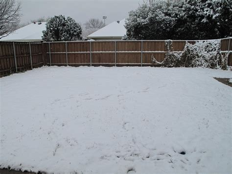 Snow Backyard By Weirdestgirl On Deviantart