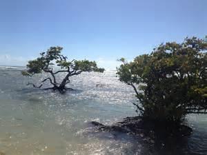 Playa De Ponce Puerto Rico