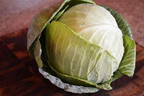 cuisiner du chou chinois comment cuisiner le chou blanc 28 images cuisiner du
