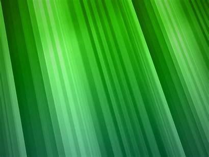 Verdes Colores Fanpop Dragonfly Todos