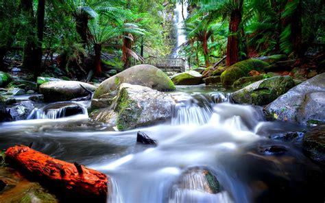 river falls wallpaper
