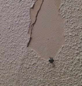crepir un mur interieur r 233 parer un crepi interieur