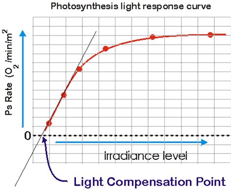 Why Does Darkness Affect The Light Independent Reactions Of Photosynthesis by The Photosynthesis Light Response Curve