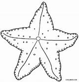 Starfish Coloring Pages Printable Ocean Fish Cool2bkids Sea Sheets Template Printables Drawing Animals Animal Spongebob Worksheets Colors Templates Underwater Results sketch template