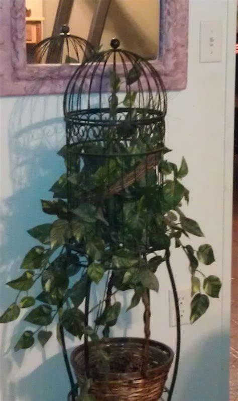 177 best images about birdcages on pinterest birdcage