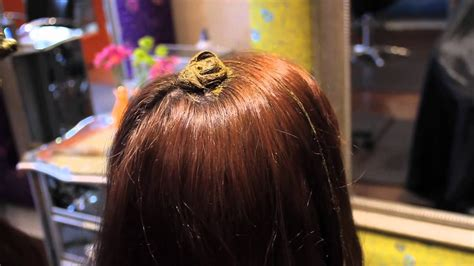 What To Do With Hair by Hair Tutorial Applying Henna And Amla For Auburn Tones
