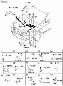 914103m020 - Hyundai Wiring Assembly