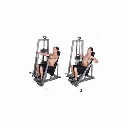 Chest Press Seated Machine Exercise Fitness Skimble