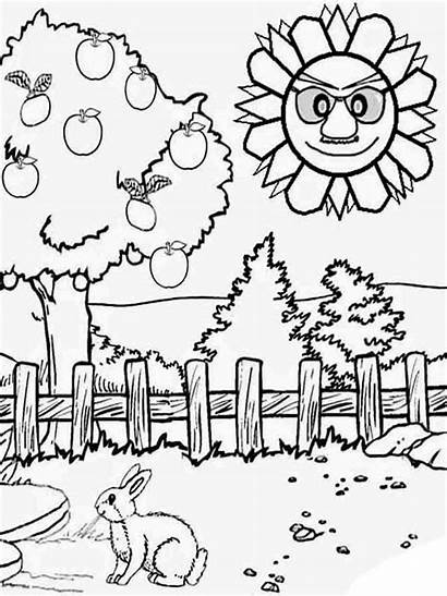 Summer Coloring Pages Nature Printable