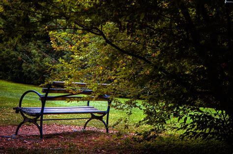 Panchina Parco by Panchina Nel Parco