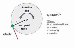Wiring Diagram  13 Free Body Diagram Circular Motion