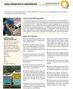 Install Package Bees In Langstroth Hive