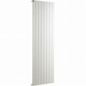 Radiateur A Eau Chaude : radiateur eau chaude entraxe 650 mm ~ Premium-room.com Idées de Décoration