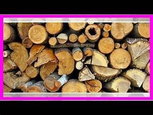 Brennholz Richtig Lagern : brennholz richtig lagern das solltest du bei der ~ Watch28wear.com Haus und Dekorationen
