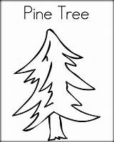 Pine Tree Coloring Line Pages Nc State Drawing Template Trees Outline Vert Est Chicka Boom Drawn Getdrawings Arbre Twistynoodle Login sketch template