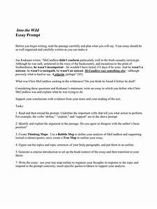 into the wild essay into the wild essay prompts jobs related