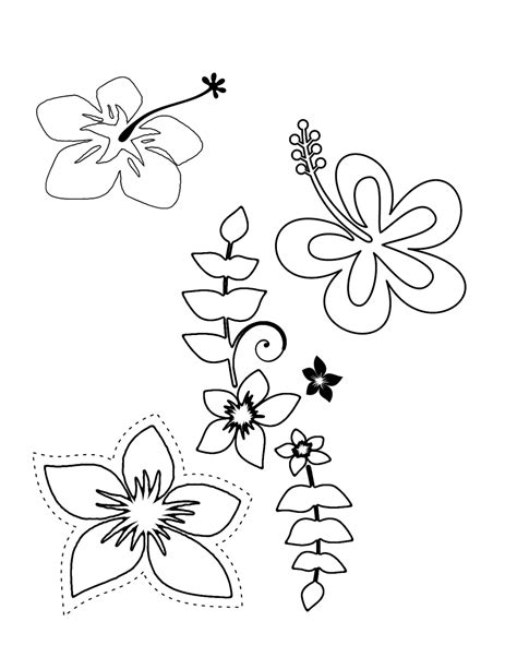 Tropical Flower Coloring Pages | Printable flower coloring pages, Flower coloring pages