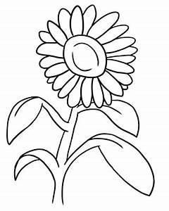 Outline Images Of Flowers - Cliparts.co