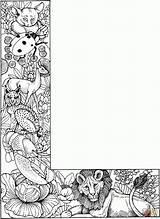Coloring Alphabet Joe Dieren Alfabet Kleurplaten Quill sketch template