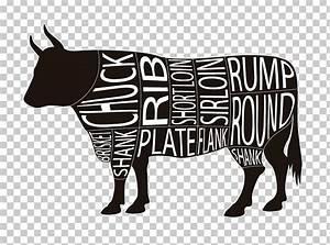 34 Beef Cow Diagram
