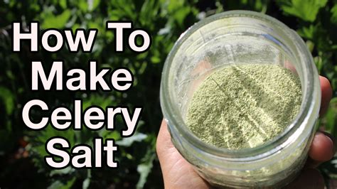 How To Make Your Own Celery Salt  High Energy Parenting
