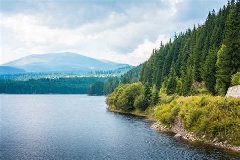 Scenery Picture by Lake Shore And Forests Scenery In Romania Free Stock Photo