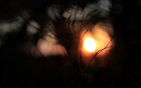 Beautiful Dark Background #6774784