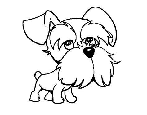 mini cuccioli da colorare disegno di schnauzer da colorare acolore