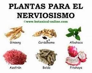 resultado de imagen para valeriana planta medicinal With como usar la raiz de valeriana como remedio contra el insomnio