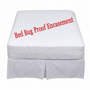 bed bugs spray bed bugs spray prevention is better With bed bug safety