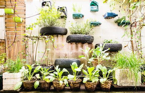 the of gardening urban gardening for birds cubs