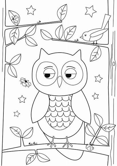 Owl Drawing Simple Coloring Pages Drawings Easy