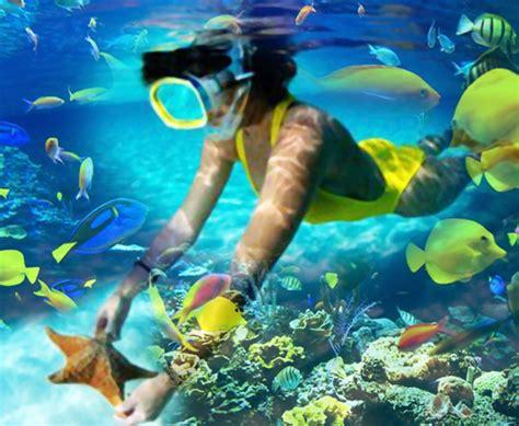 snorkeling erlichsee oberhausen rheinhausen baden