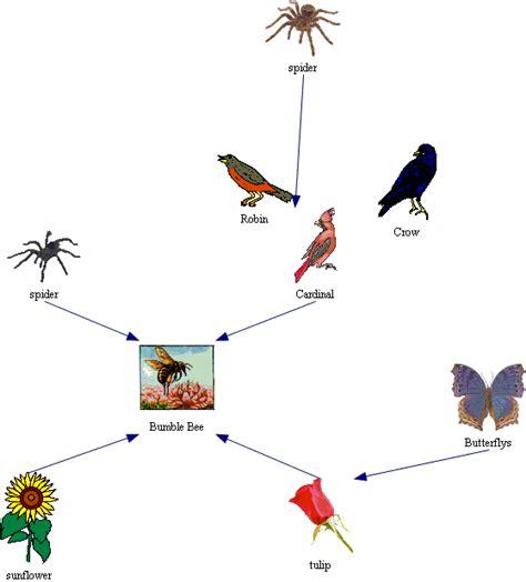 d8 cuisine honey badger diagram ribbon seal diagram elsavadorla