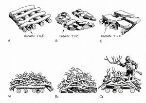 Brush Piles
