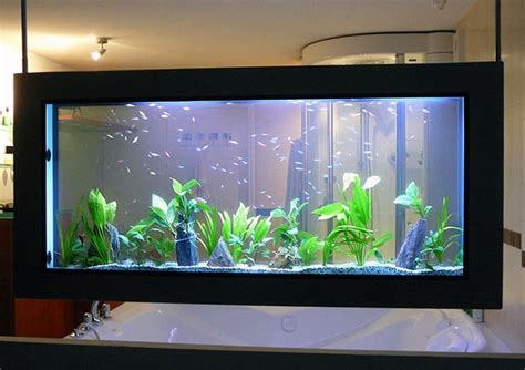 d 233 coration aquarium maison esth 233 tique