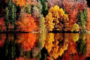 Photography, Landscape, Nature, Fall, Reflection, Lake, Forest, Colorful, Trees, Austria